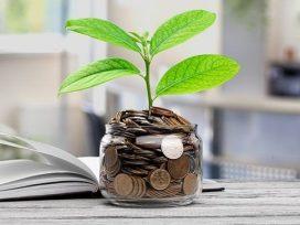 Evergreen Wealth